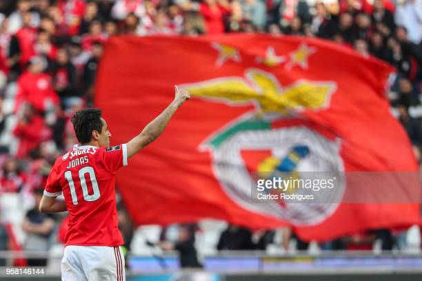 Benfica forward Jonas from Brasil celebrates scoring Benfica goal during the Primeira Liga match between SL Benfica and Moreirense FC at Estadio da...