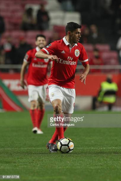 Benfica forward Raul Jimenez from Mexico during the match between SL Benfica and Rio Ave FC for the Portuguese Primeira Liga at Estadio da Luz on...