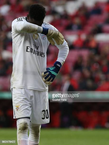 Benfica goalkeeper Bruno Varela from Portugal during the Primeira Liga match between SL Benfica and CD Tondela at Estadio da Luz on April 28 2018 in...