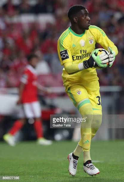 Benfica goalkeeper Bruno Varela from Portugal in action during the Primeira Liga match between SL Benfica and Portimonense SC at Estadio da Luz on...