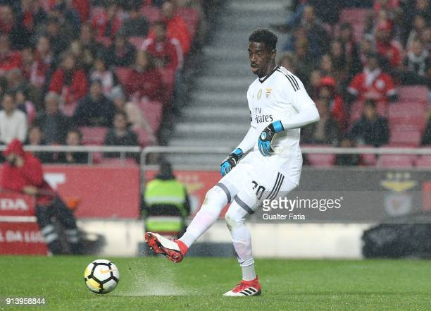 Benfica goalkeeper Bruno Varela from Portugal in action during the Primeira Liga match between SL Benfica and Rio Ave FC at Estadio da Luz on...