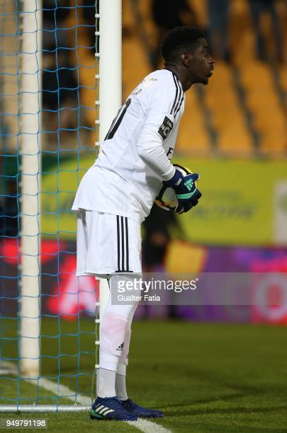 Benfica goalkeeper Bruno Varela from Portugal in action during the Primeira Liga match between GD Estoril Praia and SL Benfica at Estadio Antonio...