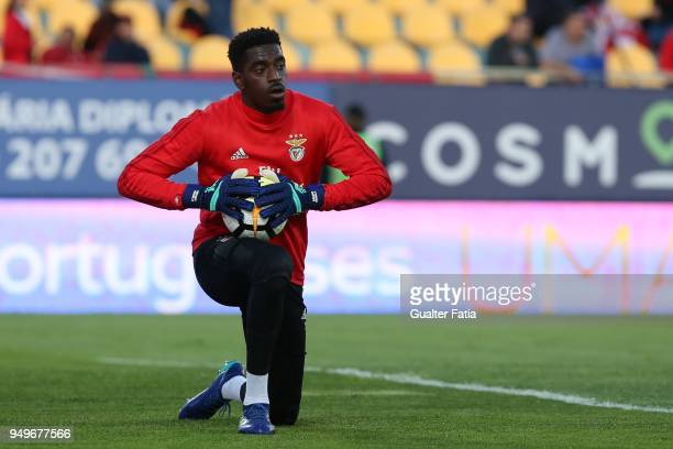 Benfica goalkeeper Bruno Varela from Portugal in action during warm up before the start of the Primeira Liga match between GD Estoril Praia and SL...
