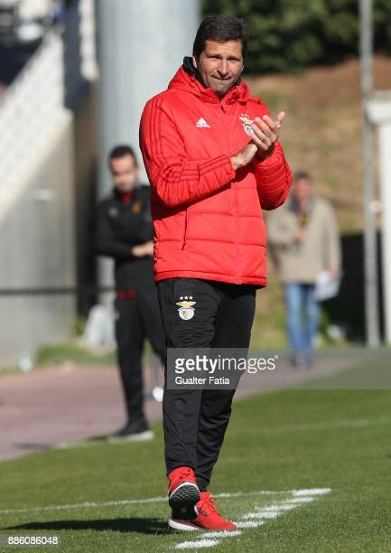 Benfica head coach Joao Tralhao from Portugal in action during the UEFA Youth League match between SL Benfica and FC Basel at Caixa Futebol Campus on...