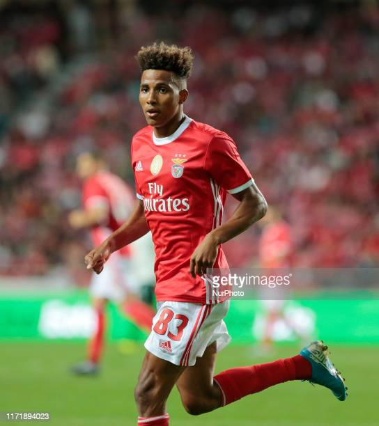 SL Benfica Midfielder Gedson Fernandes in action during the Premier League 2019/20 match between SL Benfica and Vitoria Setubl at Luz Stadium in...