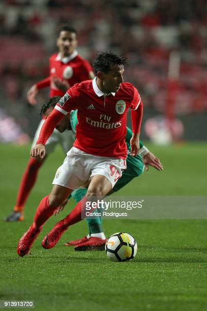 Benfica midfielder Joao Carvalho from Portugal during the match between SL Benfica and Rio Ave FC for the Portuguese Primeira Liga at Estadio da Luz...