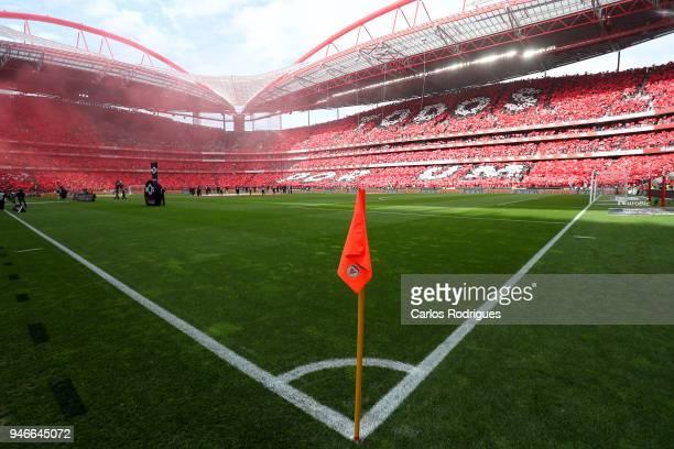 Benfica supporters before the Portuguese Primeira Liga match between SL Benfica and FC Porto at Estadio da Luz on April 15 2018 in Lisbon Lisboa