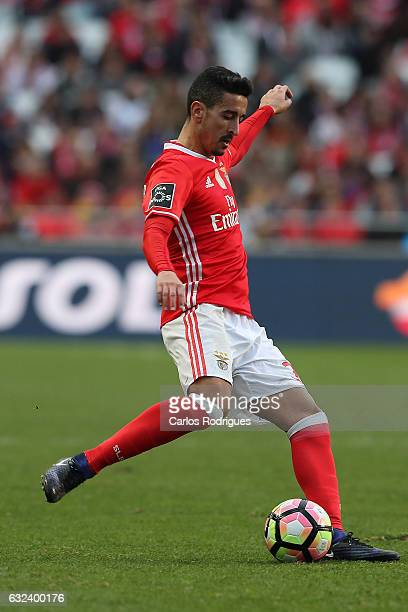 Benfica's defender Andre Almeida from Portugal during the match between SL Benfica v Tondela Primeira Liga at Estadio da Luz on January 22 2017 in...
