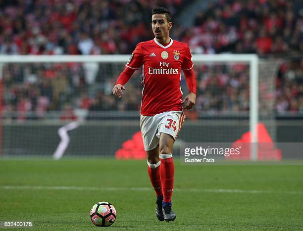 Benfica's defender Andre Almeida in action during the Primeira Liga match between SL Benfica and CD Tondela at Estadio da Luz on January 22 2017 in...