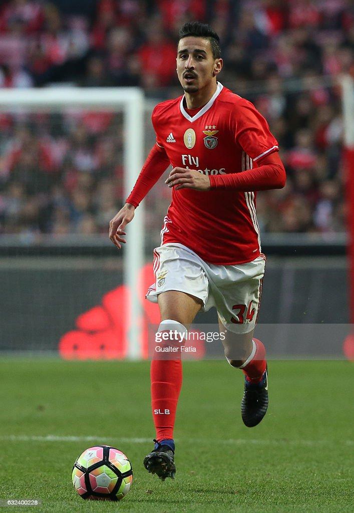 SL Benfica v Tondela - Primeira Liga