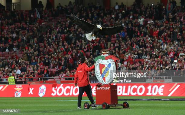 Benfica's eagle in action before the start of the Primeira Liga match between SL Benfica and GD Chaves at Estadio da Luz on February 24 2017 in...