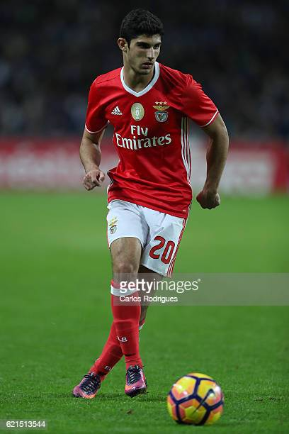 Benfica's forward Goncalo Guedes from Portugal during the FC Porto v SL Benfica Primeira Liga match at Estadio do Dragao on November 06 2016 in Porto...