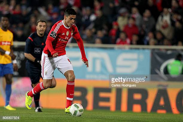 Benfica's forward Raul Jimenez during the match between GD Estoril and SL Benfica for the Portuguese Primeira Liga at Estadio da Luz on January 16...