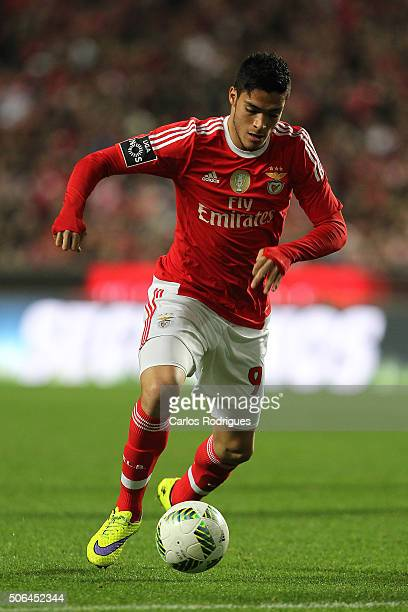 Benfica's forward Raul Jimenez during the match between SL Benfica and FC Arouca at Estadio da Luz on January 23 2016 in Lisbon Portugal
