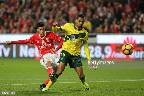 Benficas forward Raul Jimenez from Mexico and Pacos Ferreiras defender Ricardo from Cape Verde during the Portuguese Cup 2016/17 match between SL...