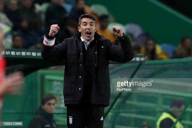 Benfica's head coach Bruno Lage celebrates during the Portuguese League football match Sporting CP vs SL Benfica at Alvalade stadium in Lisbon...