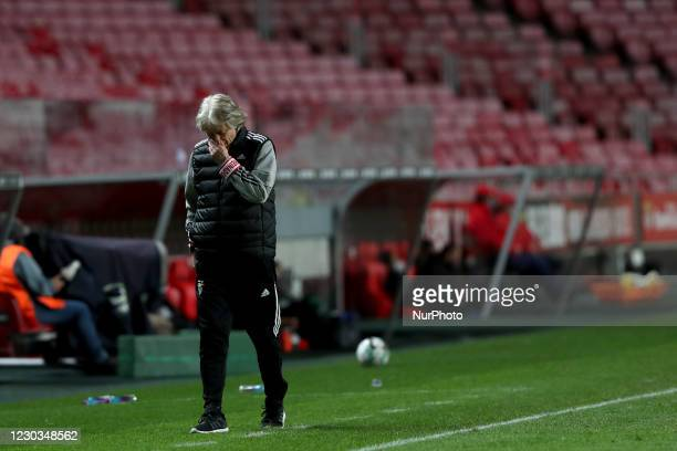 Benfica's head coach Jorge Jesus reacts during the Portuguese League football match between SL Benfica and Portimonense SC at the Luz stadium in...