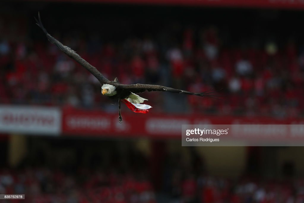 Benfica's mascot Vitoria the Eagle before the match between SL Benfica and CF Belenenses for the third round of the Portuguese Primeira Liga at Estadio da Luz on Agust 19, 2017 in Lisbon, Portugal.