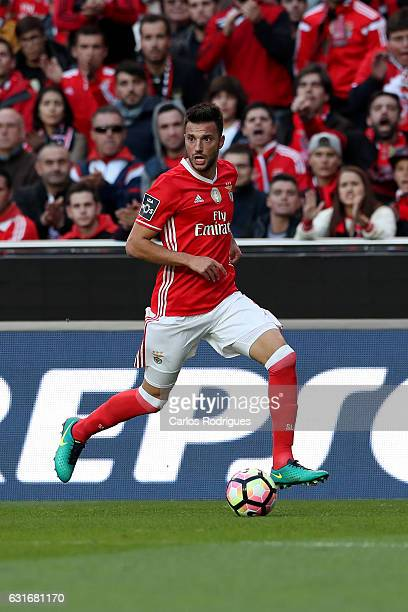 Benfica's midfielder Andreas Samaris from Greece during the match between SL Benfica and Boavista FC for the Portuguese Primeira Liga at Estadio da...