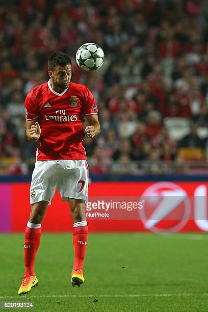 Benficas midfielder Andreas Samaris from Greece during UEFA Champions League Group B match between SL Benfica and Dynamo Kyiv at Luz Stadium in...