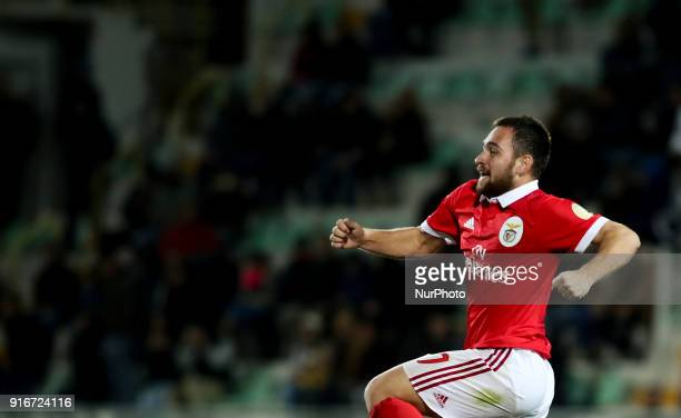Benfica's midfielder Andrija Zivkovic celebrates after scoring during the Portuguese League football match between Portimonense SC and SL Benfica at...