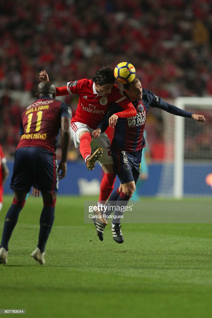 Benfica's midfielder Filip Krovinovic from Croatia (L) vies with GD Chaves midfielder Renan Bressan from Belarus (R) for the ball possession during the match between SL Benfica and GD Chaves for the Portuguese Primeira Liga at Estadio da Luz on January 20, 2018 in Lisbon, Portugal.