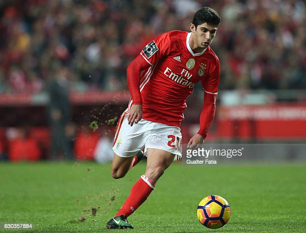 Benfica's midfielder Goncalo Guedes in action during the Primeira Liga match between SL Benfica and Rio Ave FC at Estadio da Luz on December 21 2016...