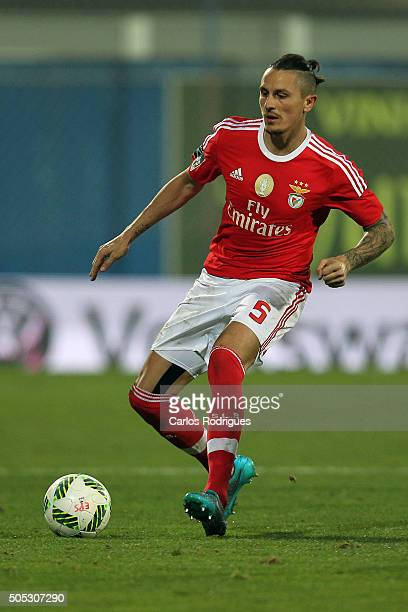 Benfica's midfielder Ljubomir Fejsa during the match between GD Estoril and SL Benfica for the Portuguese Primeira Liga at Estadio da Luz on January...