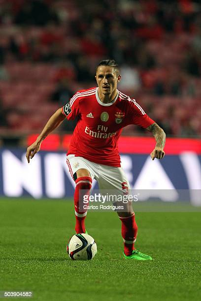 Benfica's midfielder Ljubomir Fejsa during the match between SL Benfica and CS Maritimo at Estadio da Luz on January 6 2015 in Lisbon Portugal