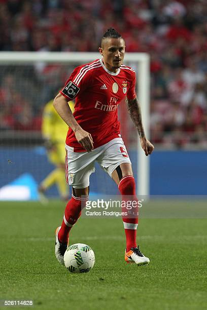 Benfica's midfielder Ljubomir Fejsa during the match between SL Benfica and Vitoria de Guimaraes for Portuguese Primeira Liga at Estadio da Luz on...