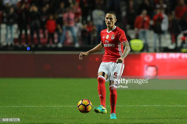 Benficas midfielder Ljubomir Fejsa from Serbia during Premier League 2016/17 match between SL Benfica and Moreirense FC at Estadio da Luz in Lisbon...