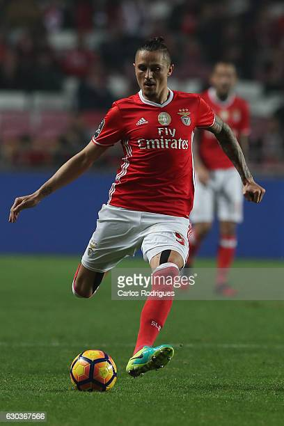 Benfica's midfielder Ljubomir Fejsa from Serbia during the match between SL Benfica v Rio Ave FC for the Portuguese Primeira Liga at Estadio da Luz...