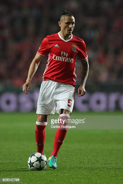Benfica's midfielder Ljubomir Fejsa from Serbia during the UEFA Champions League group B match between SL Benfica v SSC Napoli at Estadio da Luz on...