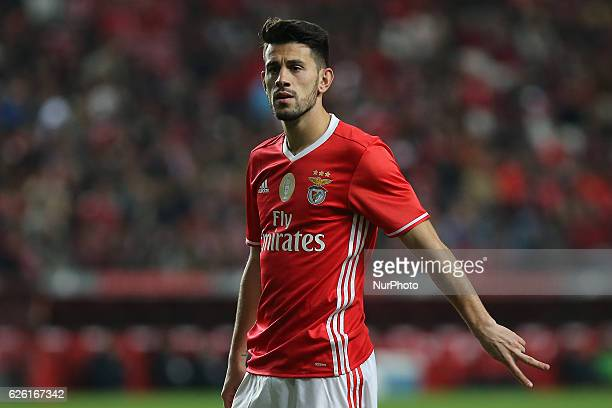 Benficas midfielder Pizzi from Portugal during Premier League 2016/17 match between SL Benfica and Moreirense FC at Estadio da Luz in Lisbon on...