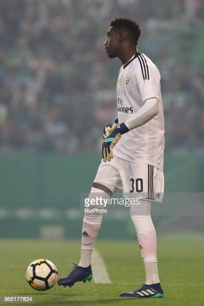 Benfica's Portuguese goalkeeper Bruno Varela in action during the Primeira Liga football match Sporting CP vs SL Benfica at the Alvadade stadium in...