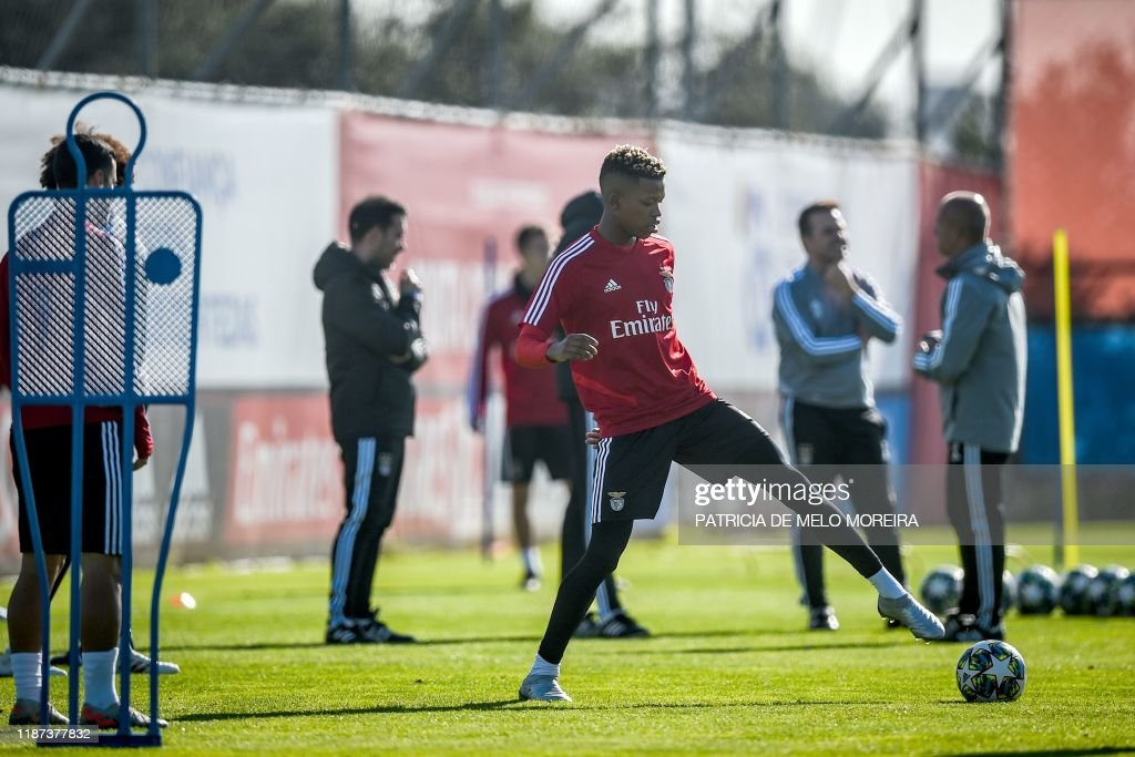 FBL-EUR-C1-BENFICA-TRAINING : News Photo