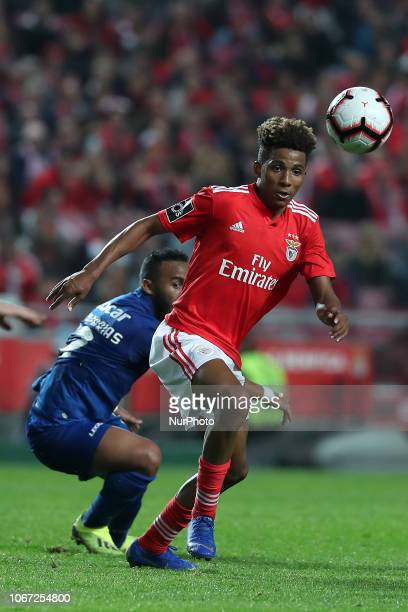 Benfica's Portuguese midfielder Gedson Fernandes vies with Feirense's defender Edson Farias during the Portuguese League football match SL Benfica vs...