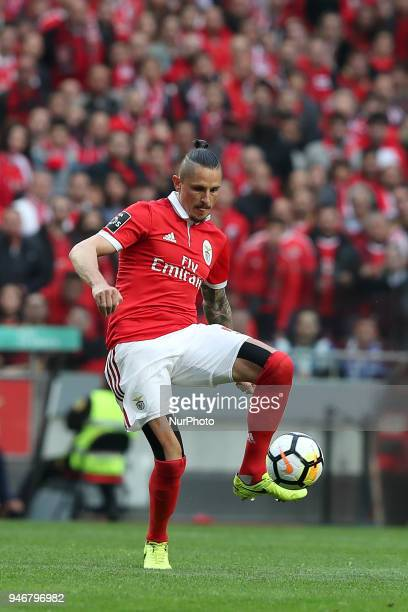 Benfica's Serbian midfielder Ljubomir Fejsa in action during the Portuguese League football match SL Benfica vs FC Porto at the Luz stadium in Lisbon...