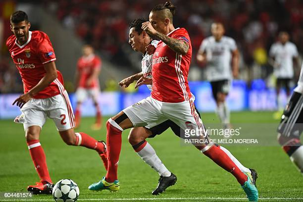 Benfica's Serbian midfielder Ljubomir Fejsa vies with Besiktas' Brazilian defender Adriano Correia during the UEFA Champions League football match SL...
