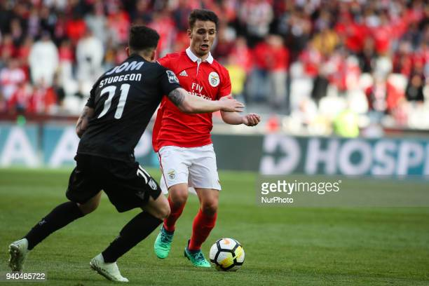 Benfica's Spanish midfielder Alex Grimaldo vies with Guimaraes's midfielder Fabio Sturgeon during the Portuguese League football match between SL...