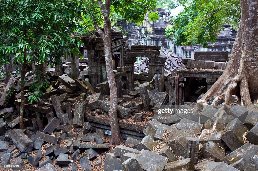 Beng Mealea Temple, Cambodia : Stock Photo