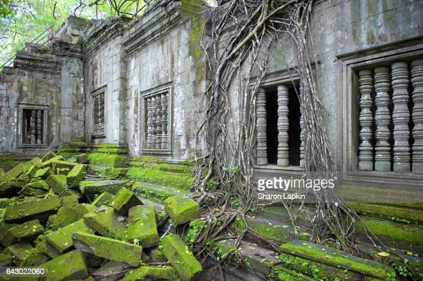 Beng Mealea Temple or the 'jungle temple'