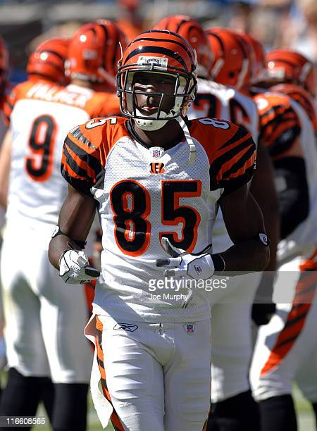 Bengals Chad Johnson The Cincinnati Bengals beat the Tennessee Titans 3123 on October 15 2005