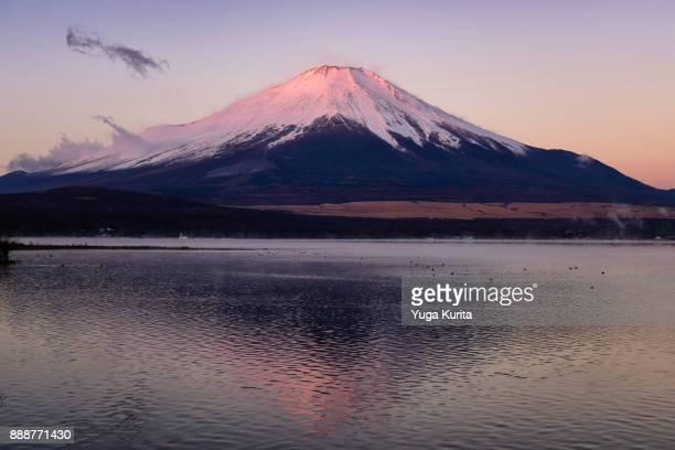 Beni Fuji (Pink Fuji)