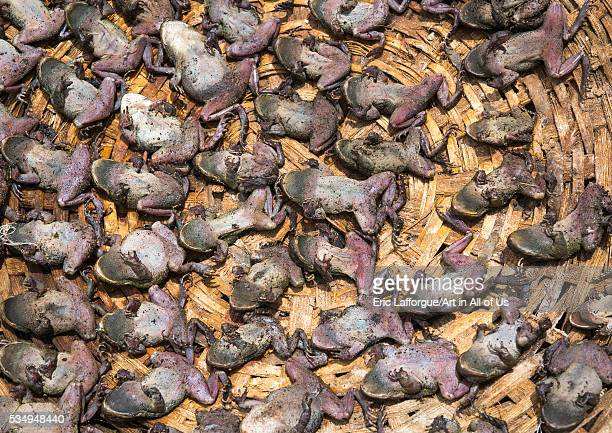 Benin West Africa Bonhicon a voodoo market with many cut heads and parts of dead animal