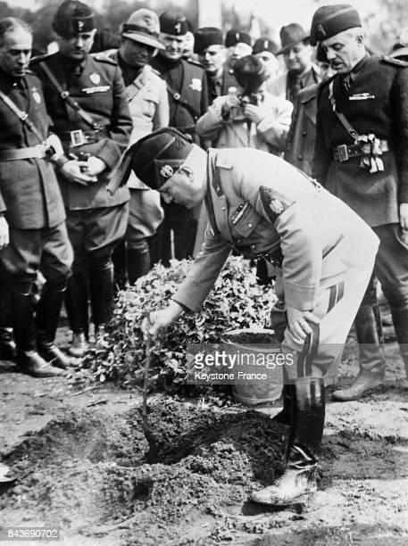 Benito Mussolini plantant un arbre pour marquer la fondation de la ville à Aprilia Italie le 26 avril 1936