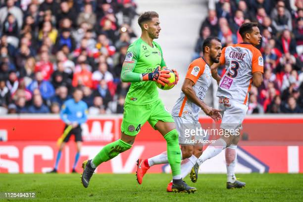 Benjamin Lecomte of Montpellier during the Ligue 1 match between Lille and Montpellier at Stade Pierre Mauroy on February 17 2019 in Lille France