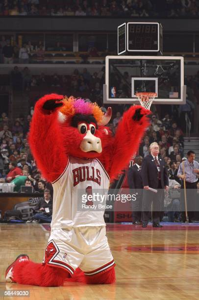 Benny the Bull mascot of the Chicago Bulls entertains the crowd during a timeout of their NBA game against the Boston Celtics on December 17 2005 at...