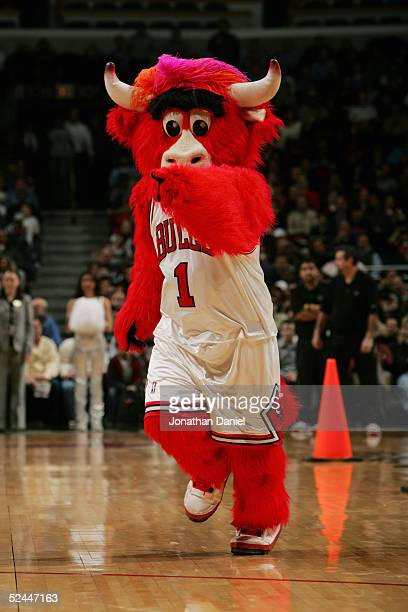 Benny the Bull mascot of the Chicago Bulls entertains the fans during the game against the Houston Rockets on March 1 2005 at the United Center in...