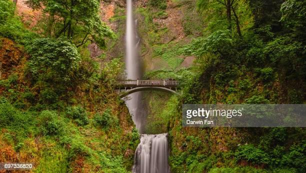 benson bridge, multnomah falls, oregon - multnomah falls stock photos and pictures